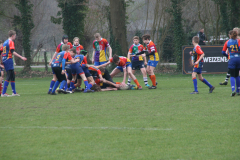 Twente-blue-cubs-vs-wasps-23-mrt-19-198