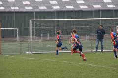 Twente-blue-cubs-vs-wasps-23-mrt-19-218