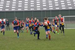 Twente-blue-cubs-vs-wasps-23-mrt-19-243