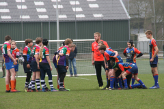 Twente-blue-cubs-vs-wasps-23-mrt-19-97